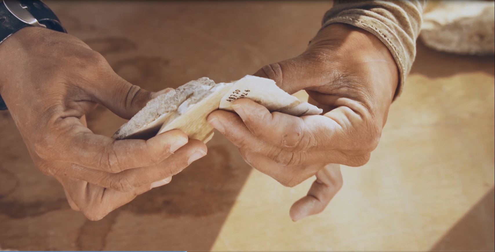 Encuentran evidencias de humanos que abandonaron África hace 100.000 años en Dimona
