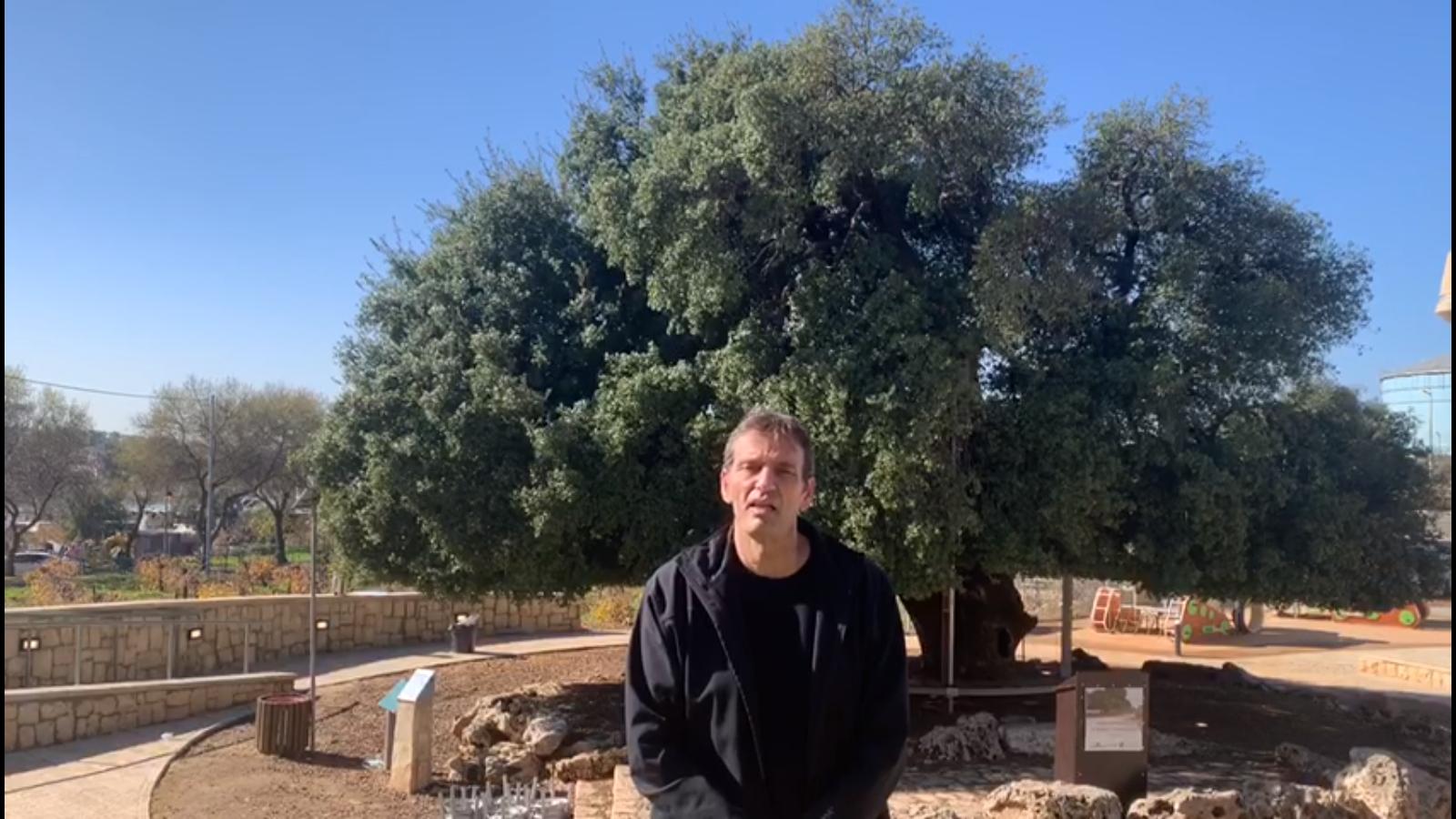 Mensaje de Navidad del director general del Ministerio de Turismo de Israel, Amir Halevi
