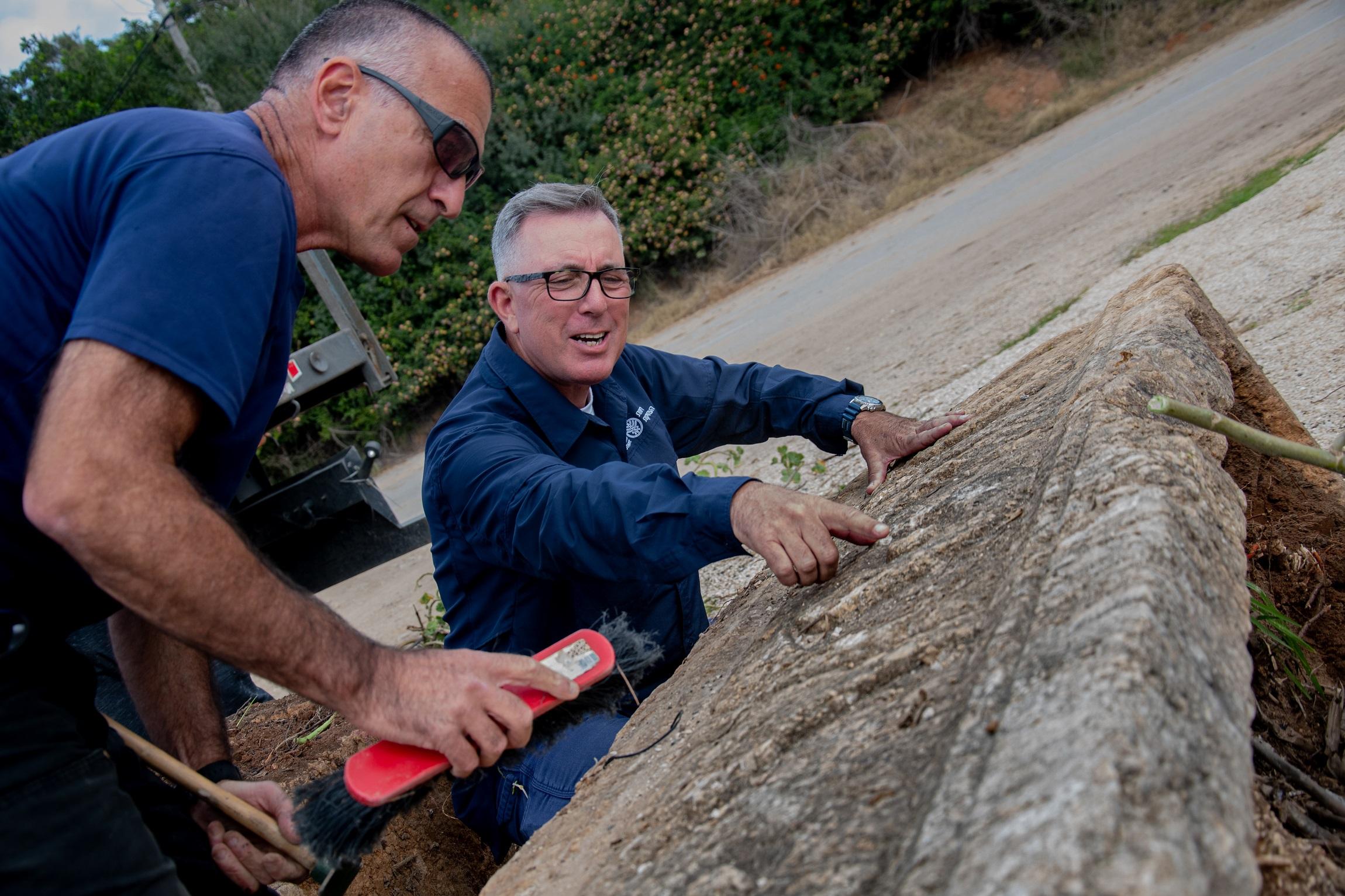 Encuentran dos sarcófagos de 1.800 años de antigüedad en el parque Ramat Gan